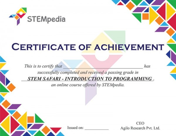 Introduction to Programming Certificate