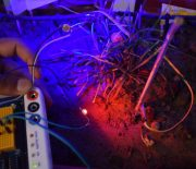 Automatic Plant Lighting System