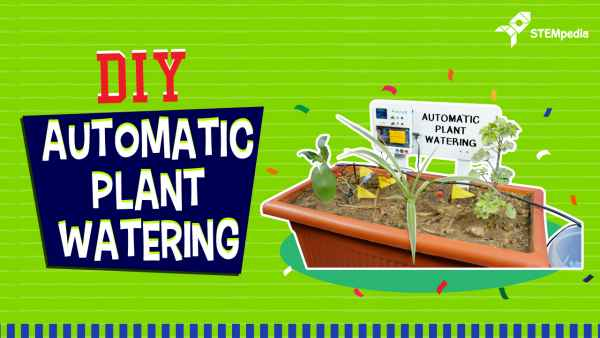 DIY Automatic Plant Watering System for Agriculture Using